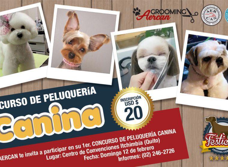 Concurso de peluquería canina en Quito